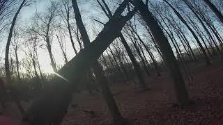 "1 Pack Raw FPV Freestyle - Testing BQE Botafx Banger 5"" - Windy Tree Spot"