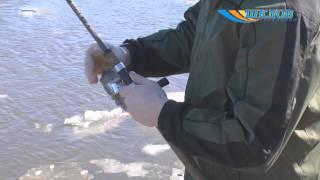 Правилам ведения рыболовного хозяйства и рыболовства республики беларусь