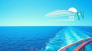 Live: AIDAnova vs. Mein Schiff 1 - Unsere anstehenden Reisen am Wochenende | Kholo.pk