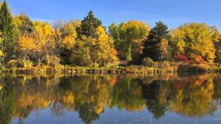 Boise Autumn