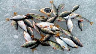 Рыбалка в лопотово истринское водохранилище как проехать
