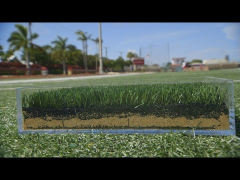 Video How AstroTurf Got Kicked Off the Field