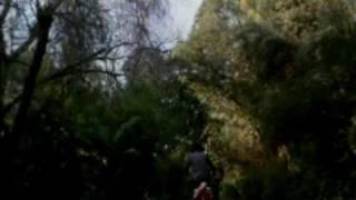 Pee-wee's Big Adventure (1985) Video