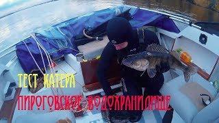 Пироговское водохранилище отчет о рыбалке