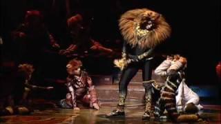 Cats - The Rum Tum Tugger