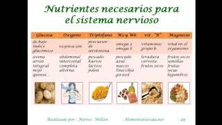 Nutrientes esenciales para el sistema nervioso.