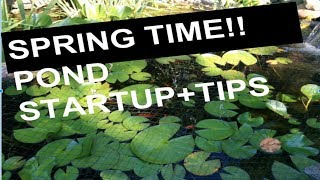 **SPRING POND START UP!!!**  (How to PLUS tips!!)