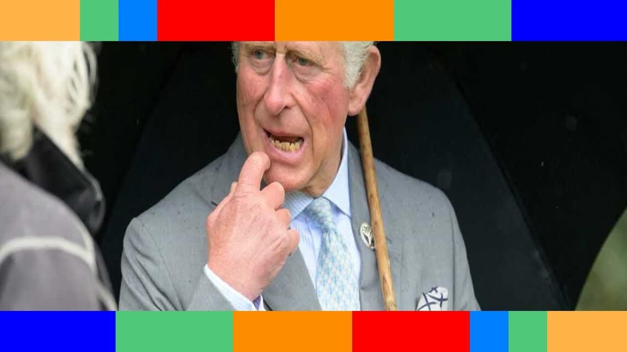 Le prince Charles «ennuyeux» Donald Trump lui décoche une flèche