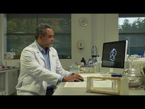 Ματέους Γουέμπα ντα Σίλβα: Ο Αγκολέζος ερευνητής του DNA …