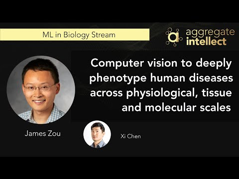 Computer vision to deeply phenotype human diseases across physiological, tissue and molecular scales