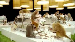 Кофе, Costa Coffee TV Advert - Monkeys and typewriters