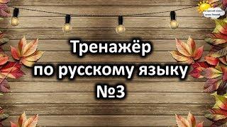 Тренажёр по русскому языку №3. Учимся играя.