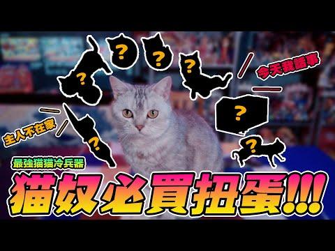 貓奴必買扭蛋「貓械庫」可愛冷兵器殺到!【玩具人玩玩具】