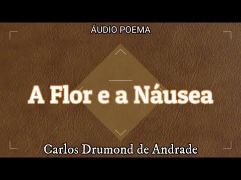 Poema A Flor e a Náusea   Carlos Drummond de Andrade