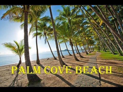 Download Palm Cove Beach - Cairns Mp4 HD Video and MP3