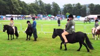 preview picture of video 'Shetland Ponies With Riders Agricultural Show Perth Perthshire Scotland'