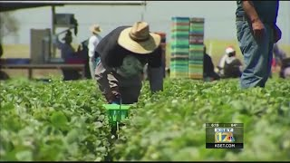 Valley congressman leads effort to protect farmworkers from deportation