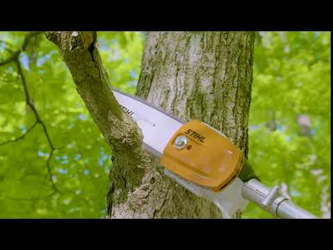 Stihl HT 56 C-E in Ennis, Texas - Video 1