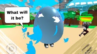 roblox pet simulator twitter codes - 免费在线视频最佳电影