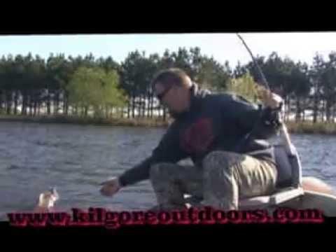 How to bass fishing ZOOM BAITS