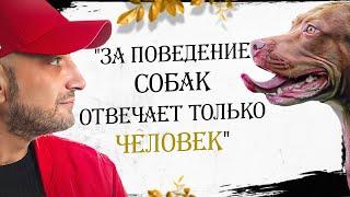 """Антуан Наджарян: """"За поведение собак отвечает только человек"""""""