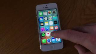 How To Clear Search History on iPhone