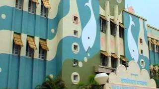 Taraporewala Aquarium, Mumbai