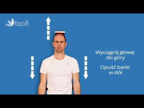 Struktura mięśni ściany brzucha
