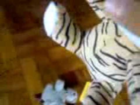 Dog Vs Tiger (stuffed Toy Version)