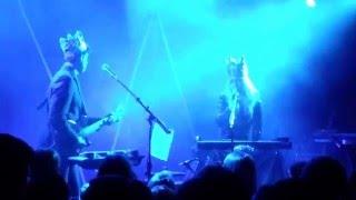 Zigtebra - Specter live
