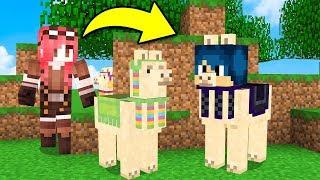 Minecraft ITA - NASCONDINO CON I LAMA!!