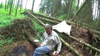 День 4. Борода ловит белок в лесу)))