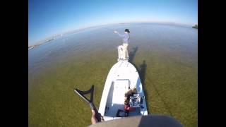 Fly Fishing Tampa Bay