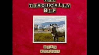 The Tragically Hip - Long Time Running
