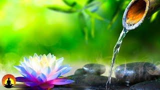 Relaxing Music, Meditation, Healing, Calming Music, Sleep, Yoga, Zen, Relax, Study, Spa,☯3612