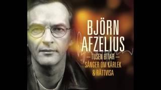 En Kungens Man Björn Afzelius