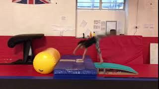 Hard Working Gymnasts!
