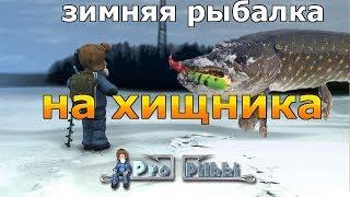 Рыбалка на зимнего хищника
