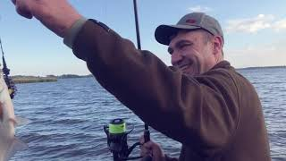 Торговая марка трофей рыбалка