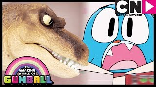 Gumball | Tina The Bully   The Fight (clip) | Cartoon Network
