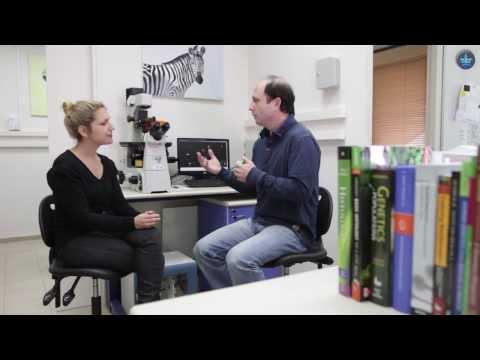 מה אומר המטען הגנטי על הבריאות שלנו?