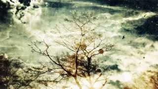 Sonne Hagal Black Spring