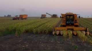 NTR 2013 Harvest McLean, IL