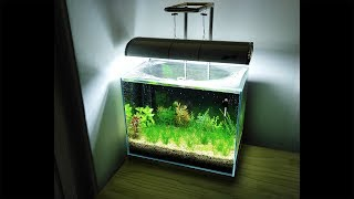 (Setting Up) NO filter, NO CO2, NO Ferts 5 Gallon Nano Tank