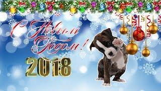 Поздравление С Новым Годом! 2018. Год Собаки.