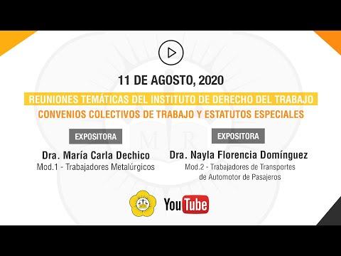 REUNIONES TEMÁTICAS DEL INSTITUTO DE DERECHO DEL TRABAJO - 11 de Agosto 2020