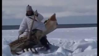 """""""Охотники студеных берегов"""""""