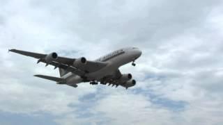 Manaus Spotting Team - LAX Int`l Airport