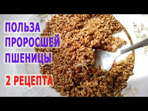 Welche Gräser man von den Würmern trinken kann