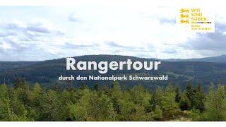 Mit dem Ranger im Nationalpark Schwarzwald